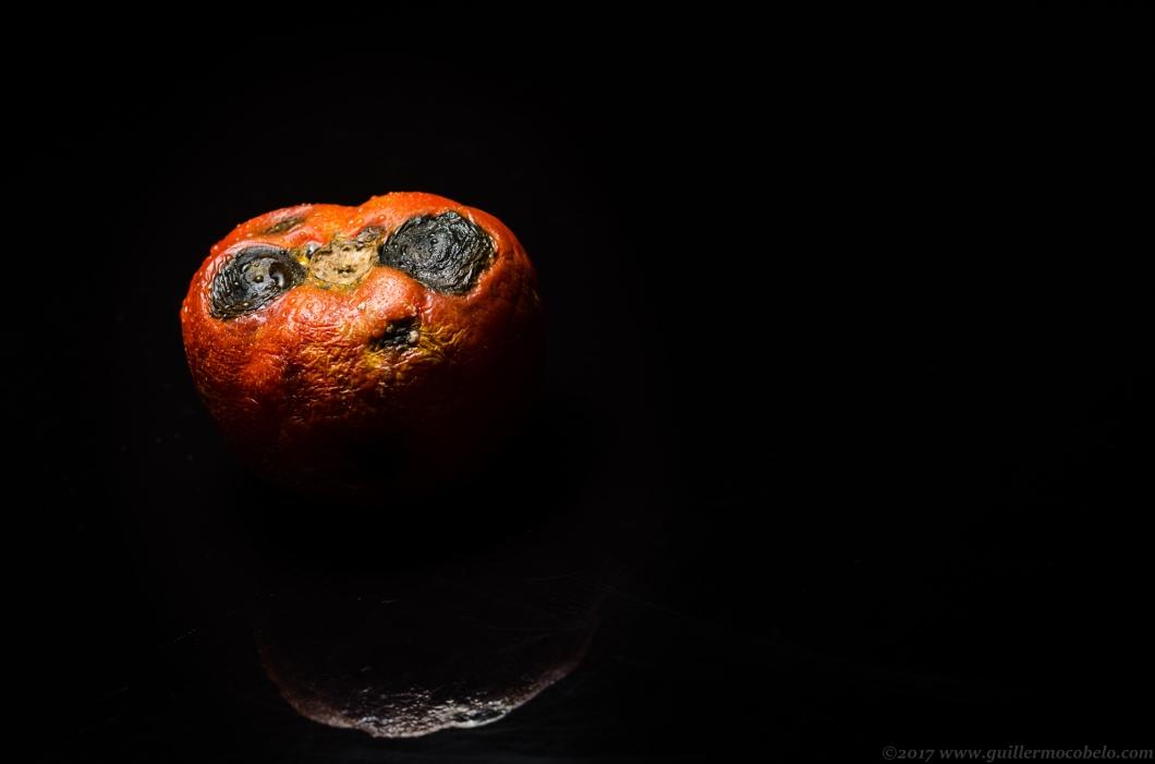 Tomate-3.jpg